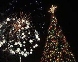 North Richland Hills TX Official Website - Magic Christmas Tree