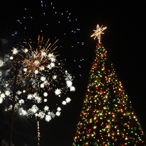 Tree Lighting and Fireworks
